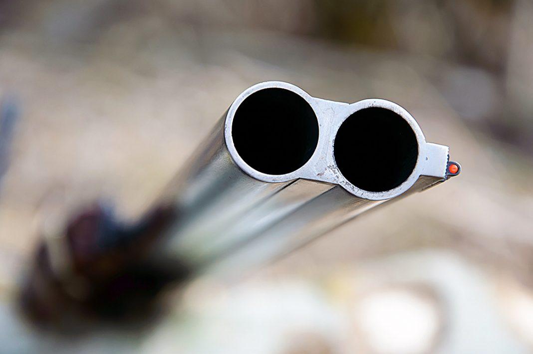 Les canons des fusils de chasse