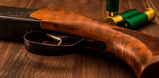 La crosse des fusils de chasse