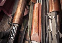 Les calibres des fusils de chasse
