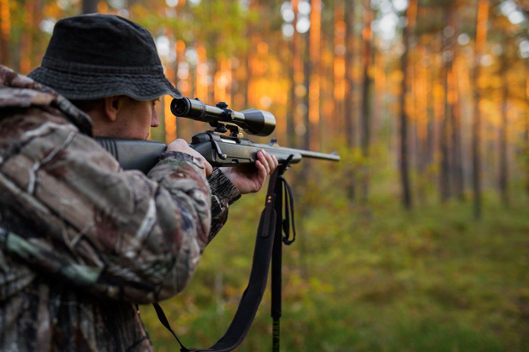 La chasse à l'approche ou au pirsch
