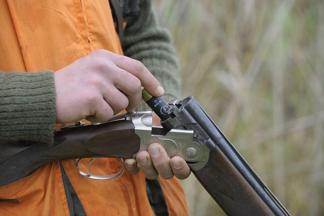 L'examen du permis de chasser