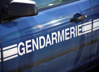 gendarme-sanglier