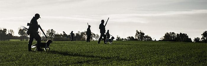 chasse à la journée : 350 territoires de chasse