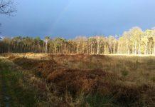 Chasse en licence dirigée ONF en forêt domaniale de Raismes st amand walllers