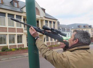 Oise : une commune obligée de détruire les pigeons à la carabine