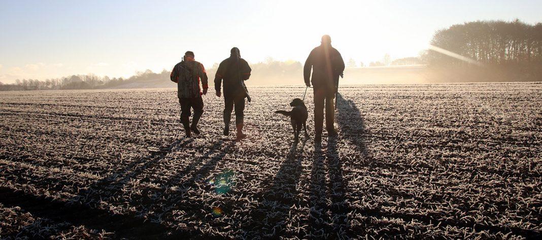 À l'instar de nombreux département, la Creuse lance cette année le permis de chasse à 0€