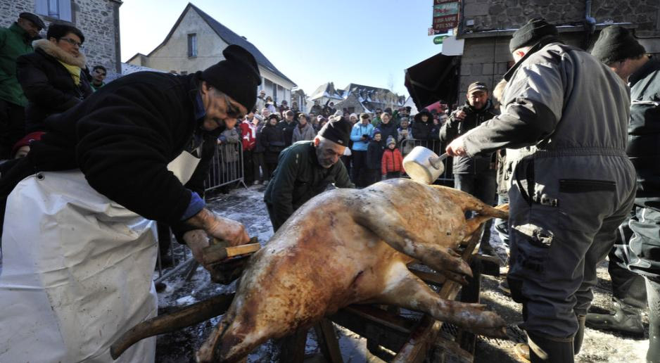 La saint cochon rebaptis e un salon du chiot annul - Salon de la chasse saint gely du fesc ...
