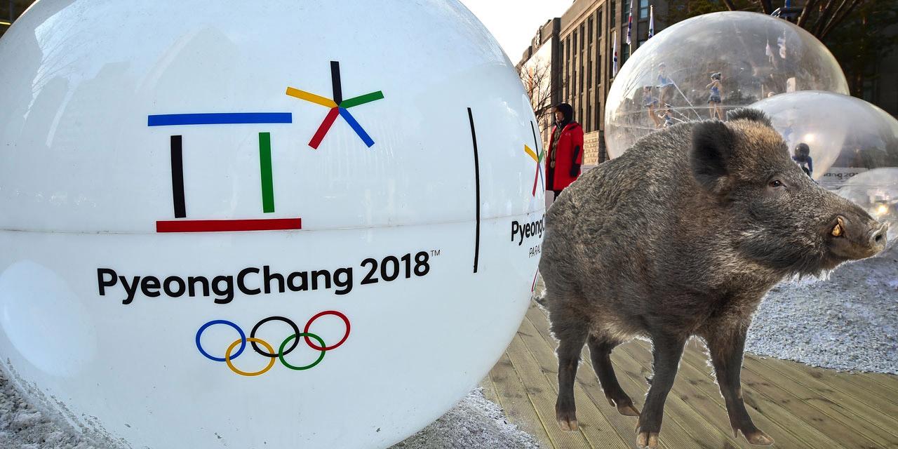 Pyeongchang la technologie 5g test e pour faire fuir les - Faire fuir les chats ...
