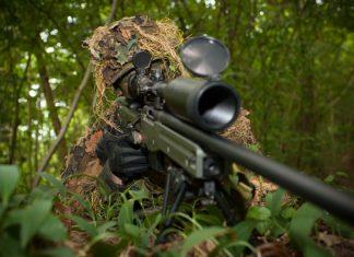 Le mot sniper tirerait son origine des chasseurs de bécassines