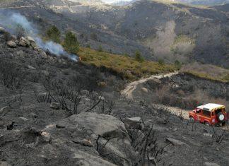 Zone incendiés en Corse, des écologistes souhaitent limiter la chasse aux abords