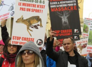 Manifestation anti-chasse à courre samedi à Compiègne