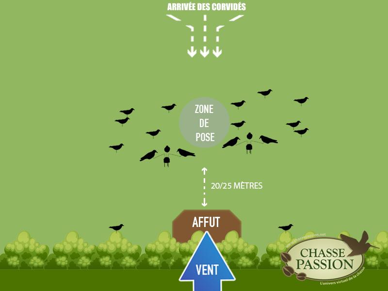 Exemple d'attelage pour chasser le corbeau