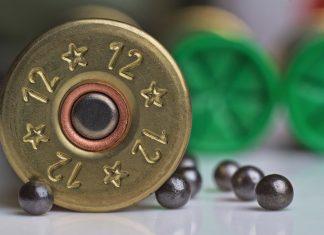 L'agence européenne des produits chimiques préconise d'interdit le plomb à la chasse partout