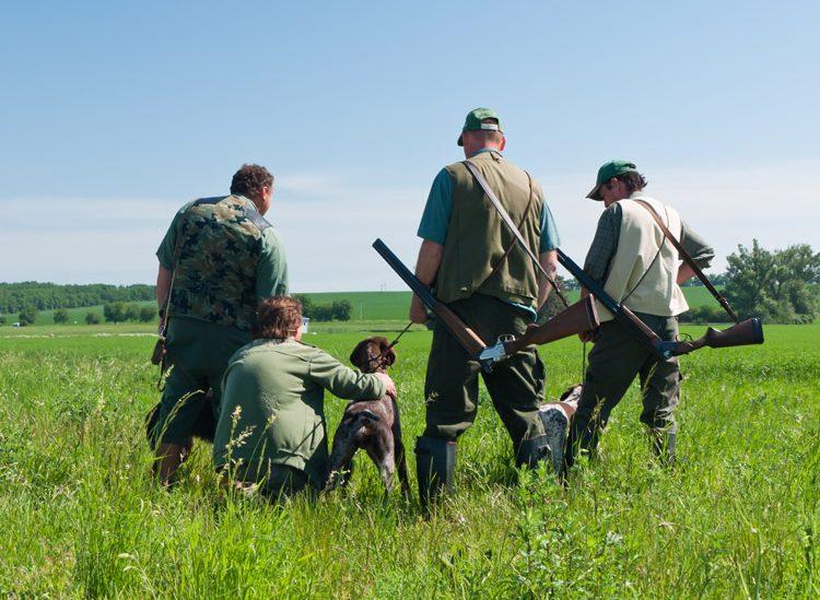 Débat sur un jour de non chasse en France