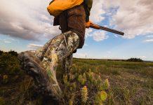 Les dates d'ouverture et de fermeture de la chasse 2019 2020
