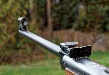 Quelles sont les conditions pour acheter une carabine à plombs ?