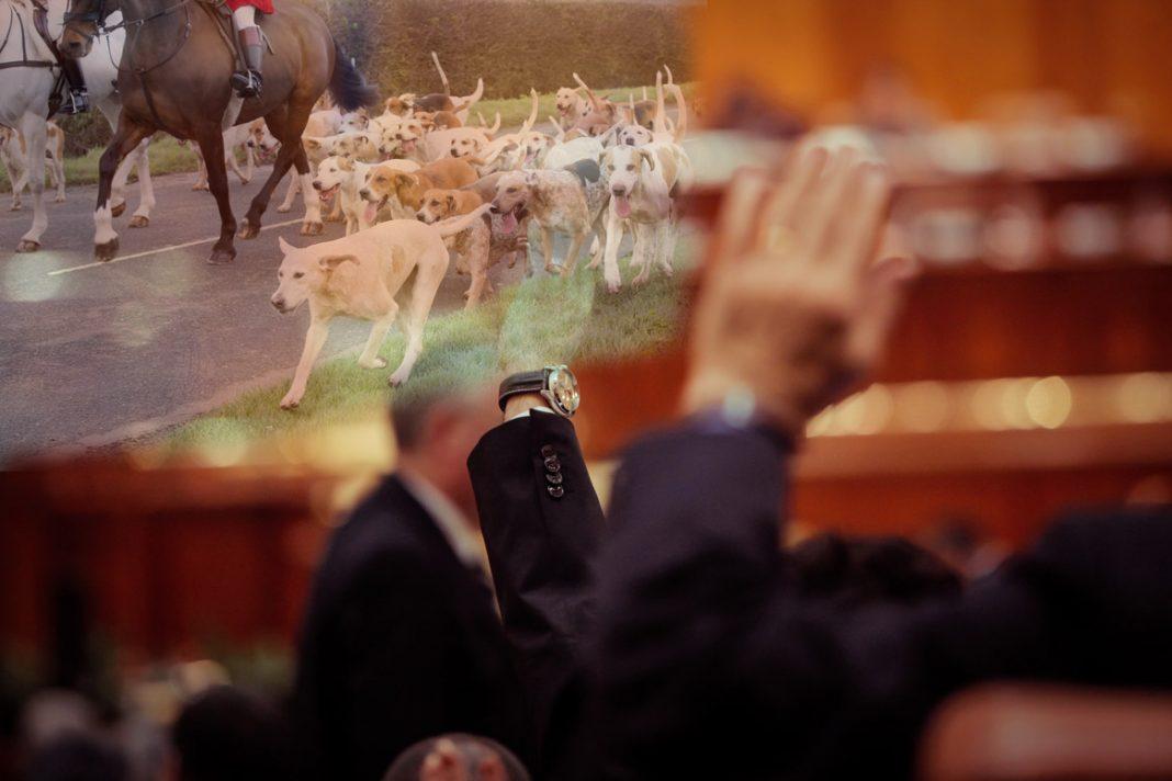 Nouvelle loi chasse : les Sénateurs durcissent le délit d'entrave à la chasse
