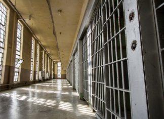 Case prison pour 2 militants antispécistes