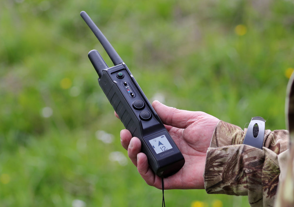 collier de dressage GPS garmin pour chiens de chasse pro 550 plus