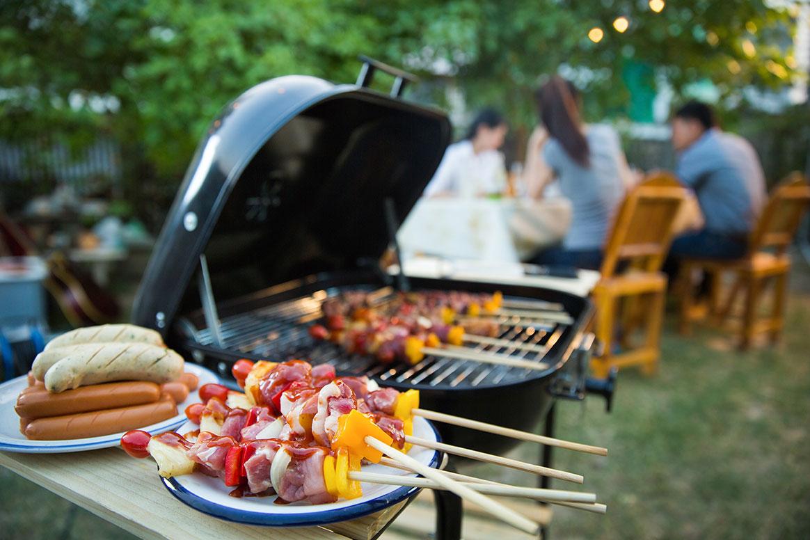 Un barbecue grandiose organisé devant la maison d'une végane — Cruelle vengeance