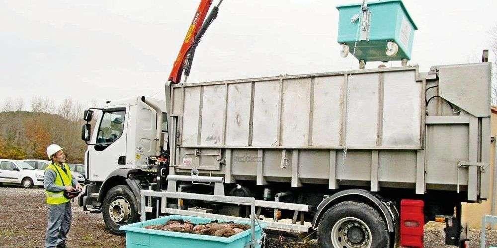 L'équarissage est surement la meilleure des solutions pour se débarraser des déchets de gibierL'équarissage est surement la meilleure des solutions pour se débarrasser des déchets de gibier