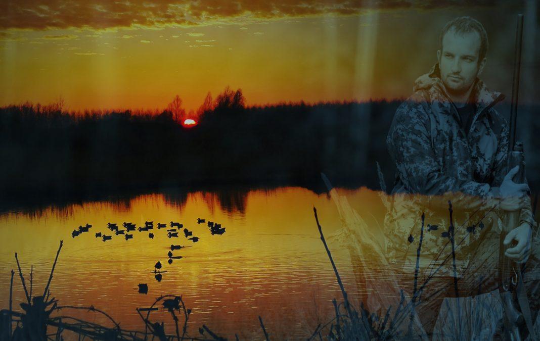 chasse de nuit