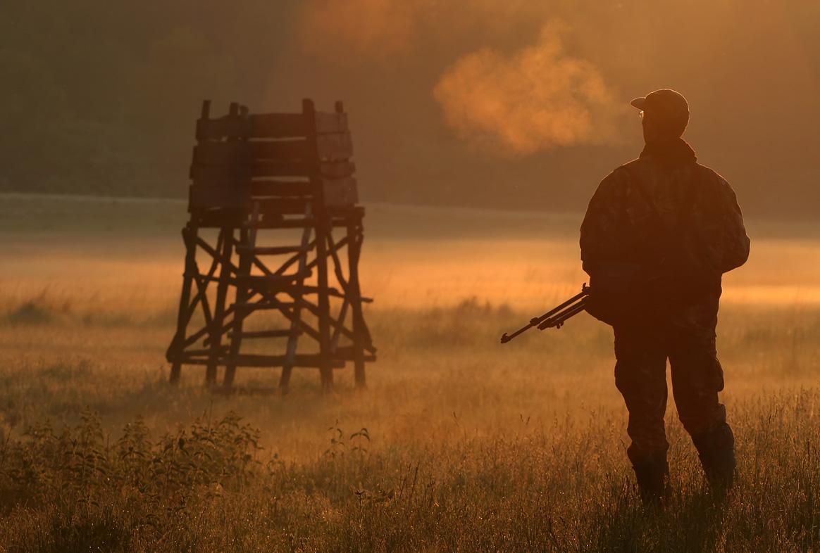 L'Alsace et la Moselle sont les seuls départements à autoriser la chasse de nuit au sanglier