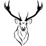 Illustration du profil de Juju42