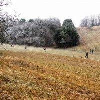 Pheasants Driven Shooting – Czech Republic 2018 p. 2